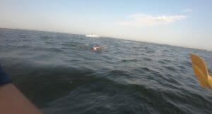 water changing at Maggie Fischer Swim